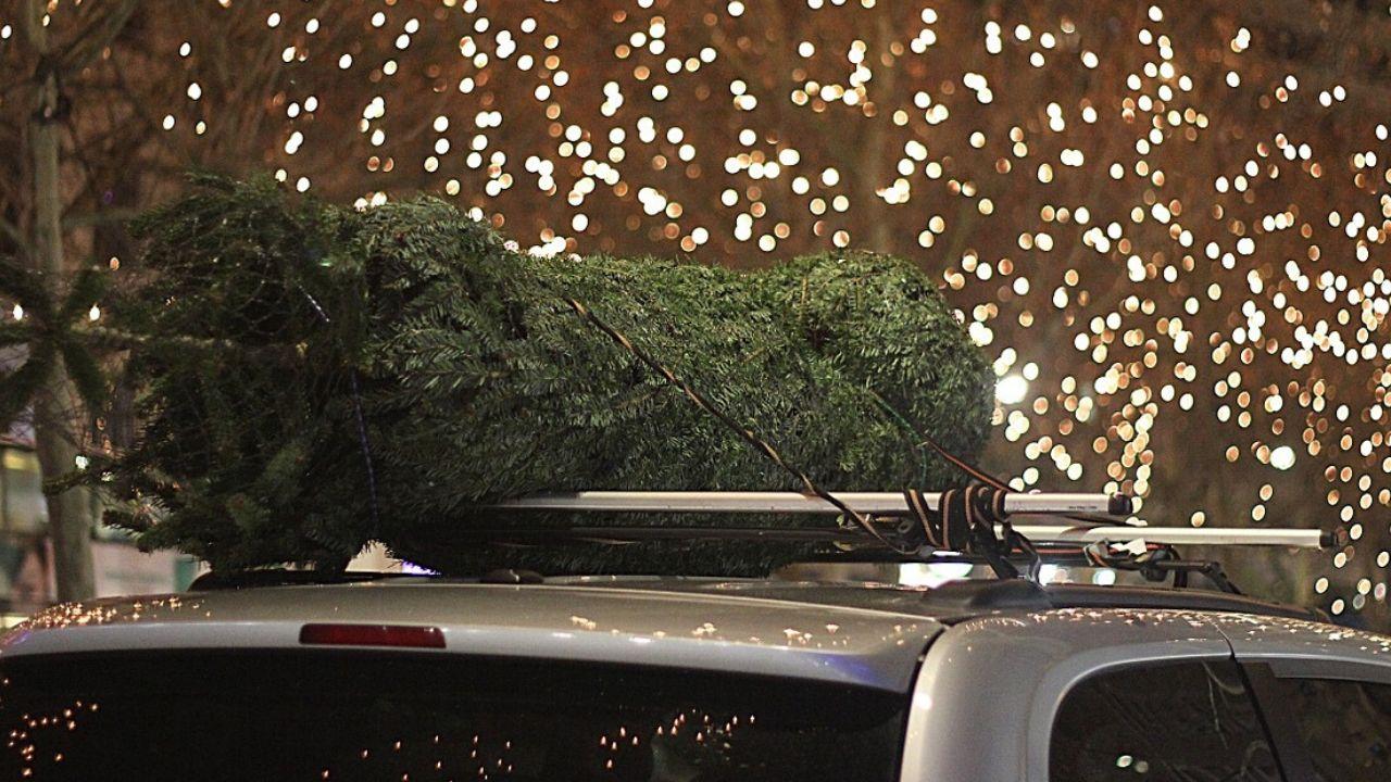 albero di natale auto