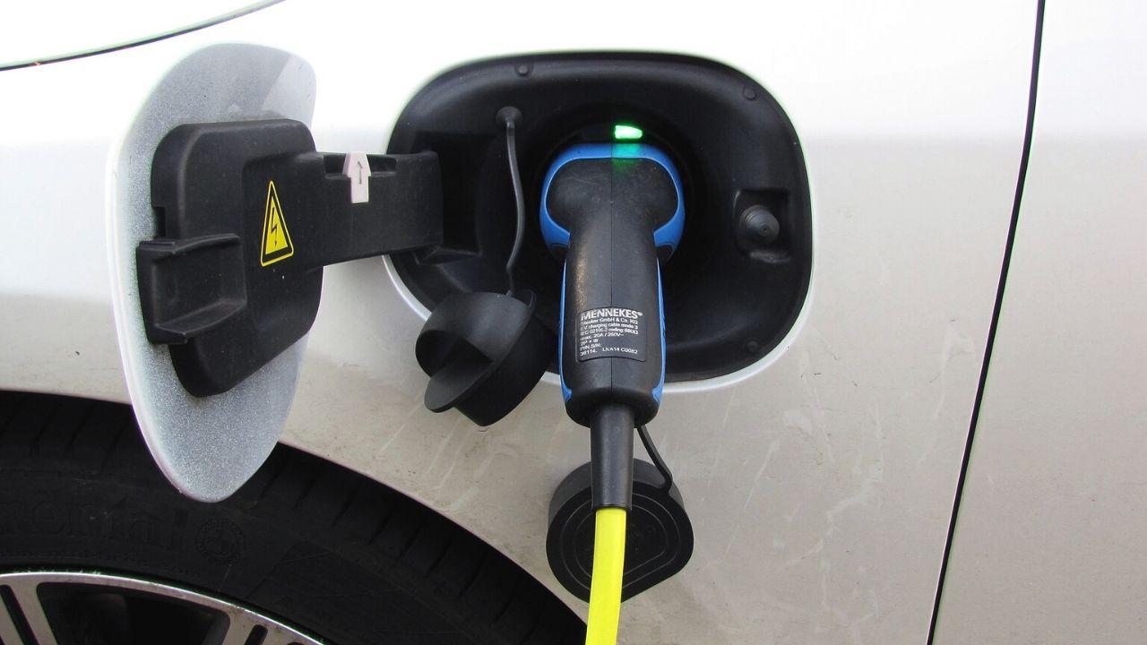 auto elettrica nel paniere istat